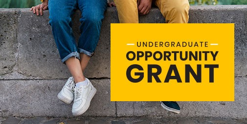 Opportunity Grant