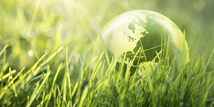 Sustainability careers, like green accounting are growing in popularity.