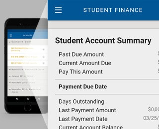 Financial overview screenshot from the DeVry app
